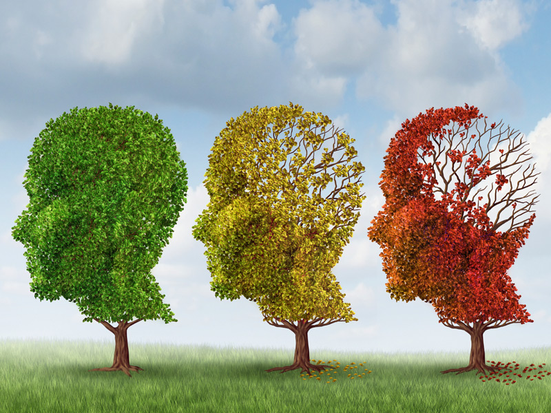 Can Alzheimer's Disease be Prevented